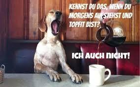 Guten Morgen Sprüche Lustig Kostenlos Downloaden Ribhot V2