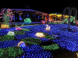 amazing garden lighting flower. Fun Outdoor Garden Lighting Led Light Bulbs Amazing Flower R