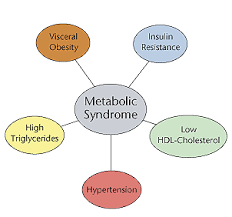 metabolism example for kids. the five risk factors that define metabolic syndrome are products of some combination aging, genetic predisposition, poor diet, and physical metabolism example for kids