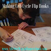 cell cycle flip book cell cycle flip book archives a better way to homeschool
