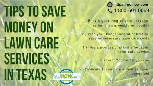 Budget Lawn Care Tips To Save Money On Lawn Care Services In Texas