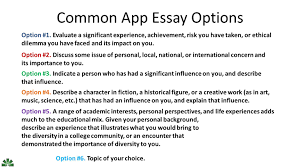 the common app essay what the shell do they want ppt common app essay options option 1