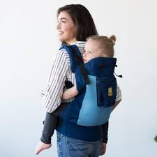 carrier for toddler. carryon airflow toddler carrier - blue/aqua for e