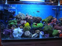 best range of aquarium led lighting aqualed com