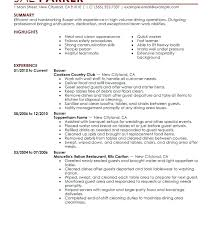 Resume Examples In English For Job Resume Example Templates Wikirian Com