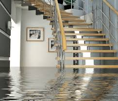 dark basement stairs. Going Down The Steps To Dark Basement In Middle Of Night, Only Have Your Toes Submerge Into A Cold Body Water When You Reach Bottom Stairs S