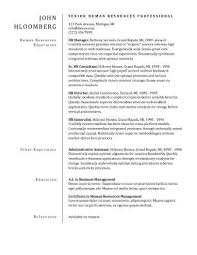Plain Resume Templates Plain Divider Sample Resume Templates Basic Resume