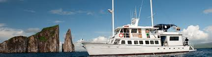 Image result for golondrina yacht Galapagos