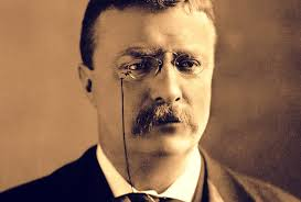 theodore roosevelt my legacy leader essay