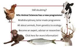 Masters Animal Sciences Wur