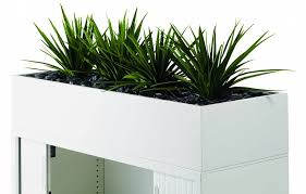 office planter boxes. office planter boxes