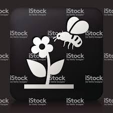 черные квадратные пуговицы с пчела на цветок стоковая векторная