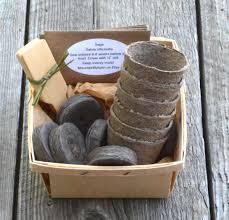 Indoor Kitchen Herb Garden Kit Herb Seed Kit Herb Garden Kit Garden Gift Set Gift For Gardener