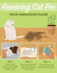 removing cat from hardwood floor stain removal