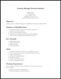 Key Skills Resume Custom Key Skills For Resume Best Key Skills Resume Australia