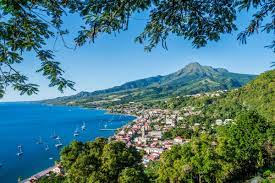 Martinique: Dengue Fieber-Ausbruch ...
