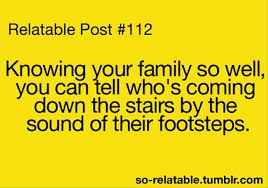 Funny Quotes About Family Interesting Funny Quotes On Family Funny Quotes