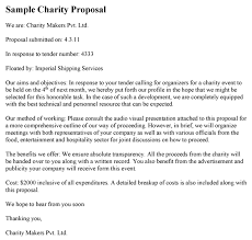Technical Offer Sample Charity Proposal Template