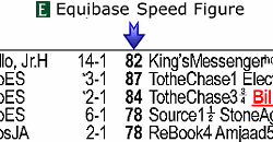 Horse Speed Index Chart Equibase Learn More Lifetime Pps