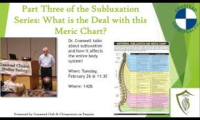 Meric Chart Part Three Of The Subluxation Series What Is The Deal With