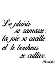 37569879 Vente Stickers 24345 Lettrage Citations En Français
