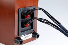 why bi amp your speakers 107rtia3c biamp dualwire jpg