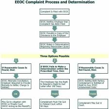 Eeo Process Chart 16 Scientific Best Visual Aid