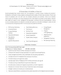 Business Analyst Resume Format Business Resume Sample Business
