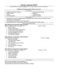 Claims Adjuster Resume Sample Free Entry Level Insurance