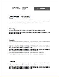Company Bio Template Fascinating A Business Profile Template Vilanovaformulateam