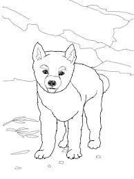 Dingo Puppy Kleurplaat Gratis Kleurplaten Printen