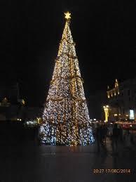 Main Market Square: The Massive Christmas tree in the Square