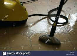 top steam cleaners floor steam mop steam mop instructions best steam cleaner for upholstery tile and top steam cleaners