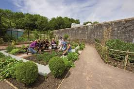 Garden Design Courses Stunning Planting Design For Beginners The NBGW Carms Means Biz