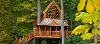 Treehouse masters mirrors Treehotel Canopy Cathedral Longwood Gardens Canopy Cathedral Longwood Gardens