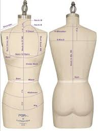 Alvaform Size Chart Professional Sewing Dress Forms How To Find The Right One