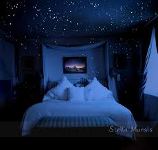 Glow in the Dark Star Stickers for Night Sky Ceiling | 400 - 1000 ...