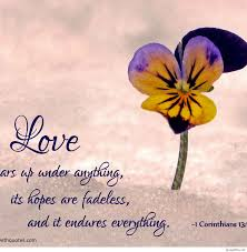 Love Bible Quotes Enchanting Lovebiblequoteslovebiblequotelarge Quotes Pics