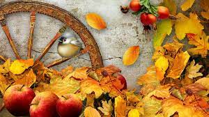 Autumn Harvest Wallpapers - Top Free ...