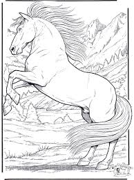 Small Picture Horse Coloring Pages On Pinterest Animal Coloring Pages Barbie