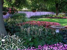 Partial Shade Flower Garden Design Top Plants For Underplanting Hgtv