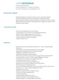 Budget Accountant Sample Resume Delectable Template Cv Sample British Council Onlineemily