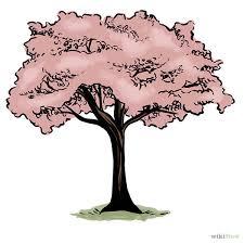 realistic apple tree drawing. Plain Apple Realistic20apple20tree20drawing With Realistic Apple Tree Drawing L