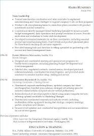 Functional Resume Definition Resume Layout Com