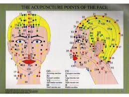 Acupuncture Facelift Points Chart Acupuncture Points Of The Face Chart Acumedic Shop
