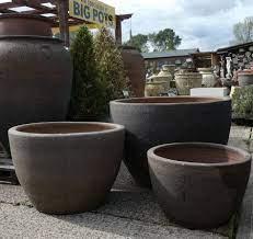 large old stone olive tree palm pot