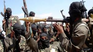 Image result for boko haram