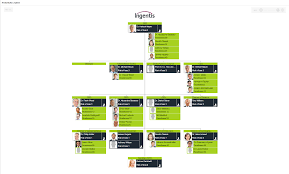 Succession Planning Chart Succession Planning Org Chart View Visualize Possible