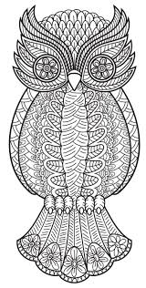 An Owl From Patterns Coloring Book