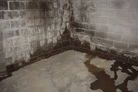 Water Proofing Basement Basement Waterproofing Costs HouseLogic - Exterior waterproof sealant